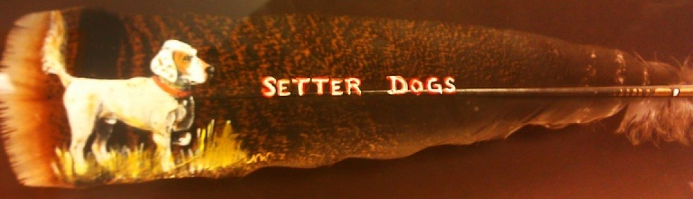 Setter Dogs